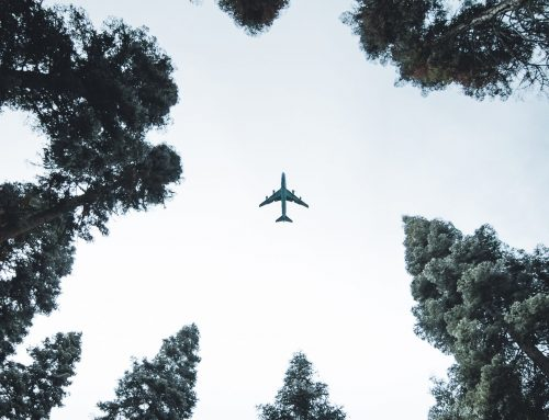 Green Airline: How to manage the green image of the future.
